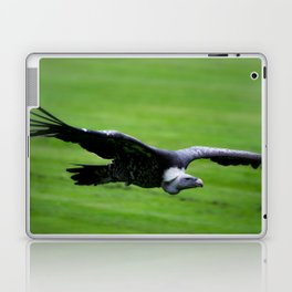 Great vulture in flight Laptop & iPad Skin
