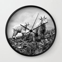 MOUNTAIN GOATS // 1 Wall Clock