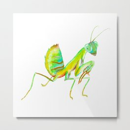 The African Mantis Metal Print