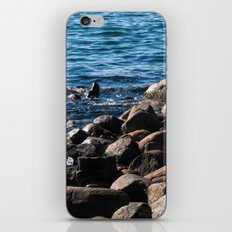 Rocks on the Water iPhone & iPod Skin