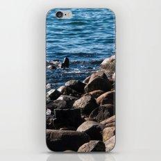 Rocks on the Water iPhone Skin