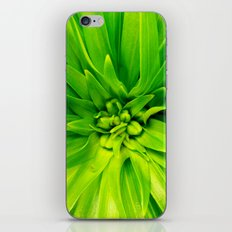 Lily's heart iPhone & iPod Skin