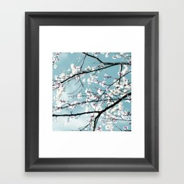 spring blossoms Framed Art Print