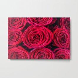 Red Roses Metal Print