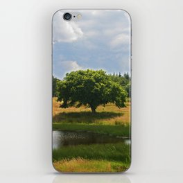 Tree Lake Sky iPhone Skin