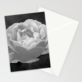 Silver Satin Rose - My Love For You Stationery Cards