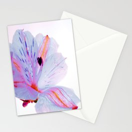 Waiting Here Stationery Cards