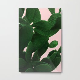 Cactus On Pink Metal Print