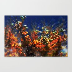 infinite fruits Canvas Print