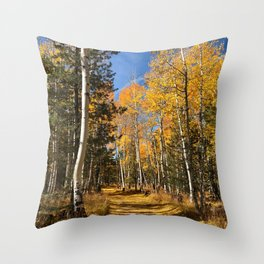 A Fall Drive Among the Aspens by TL Wilson Photography Throw Pillow