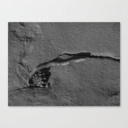 Lone Cone Canvas Print