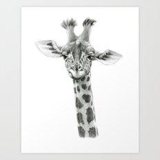 Young Giraffe  G2012-053 Art Print