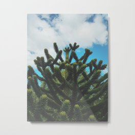 The Monkey's Puzzle Metal Print