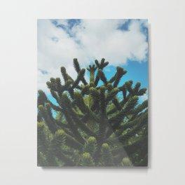 The Monkey's Puzzle Metal Print