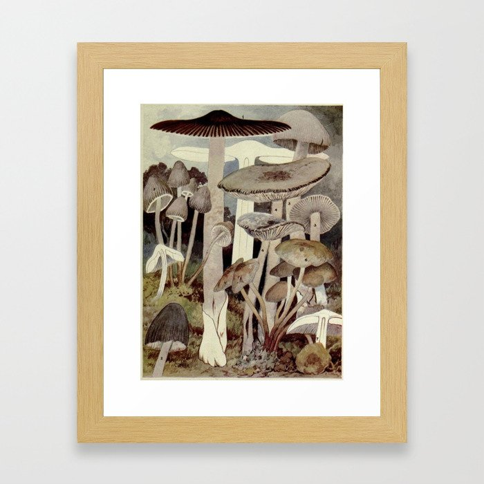 Vintage Mushroom Diagram Framed Art Print