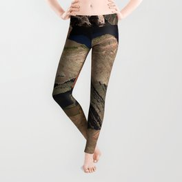 The Goosnecks - A Meander Of The San Juan River Leggings