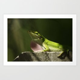 Mating Dance Art Print