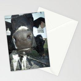 3951 Stationery Cards
