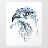 Hawk, Watercolor Art Print