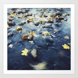 Autumn Leaves, Color Film Photo, Analog Art Print