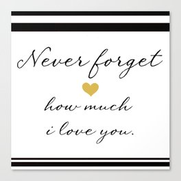 Never Forget How Much I Love You. Canvas Print