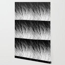 Hair Wallpaper