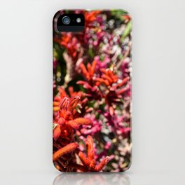 Flowers in Pink and Red iPhone Case