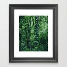 A Tree Grows in the Woods Framed Art Print