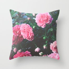 Spring Morning Pink Roses in Bloom Photography Throw Pillow
