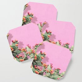Prickly Pear plants on Pink Coaster