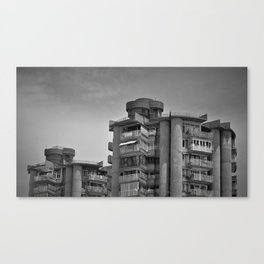 Dos Torres Canvas Print