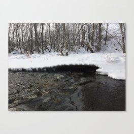 A stream of winter Canvas Print