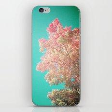 So Long September v1 iPhone & iPod Skin