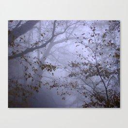 Autumn canopy in fog Canvas Print