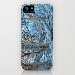 Sapphire Forest iPhone Case