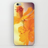 cosmos iPhone & iPod Skins featuring Cosmos by DuckyB