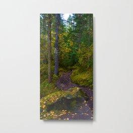Walking along the Berg Lake Trail in Fall Metal Print