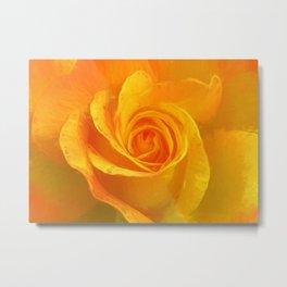Golden Rose Metal Print