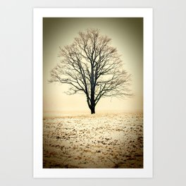 Standing In The Cold Art Print