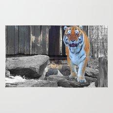 Zoo Rug