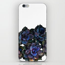 Succulents IIII iPhone Skin