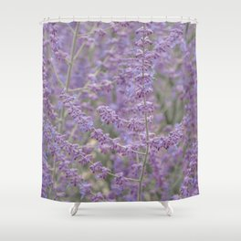 Lavender Field in Brussels Belgium Shower Curtain