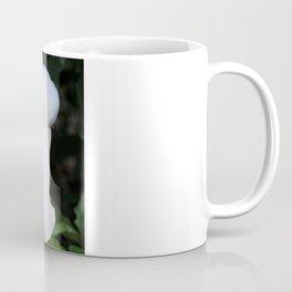 Thornapple Flower Coffee Mug