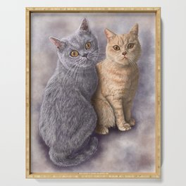 Two British Shorthair Cats Serving Tray