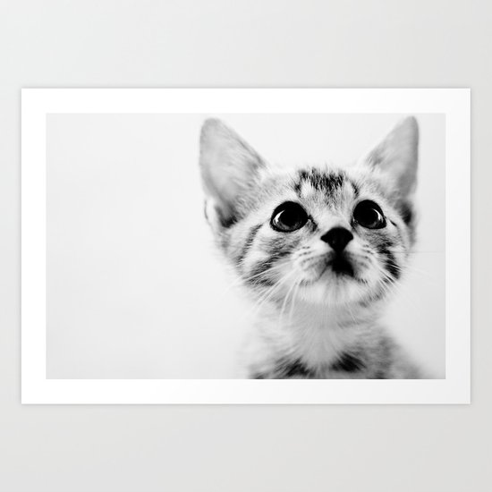 Sweet Kitten Art Print