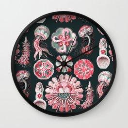 Ernst Haeckel - Scientific Illustration - Discomedusae (Jellyfish) Wall Clock