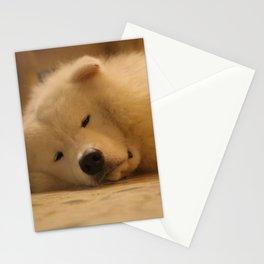 padpad Stationery Cards