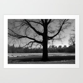 Growing Strong Art Print