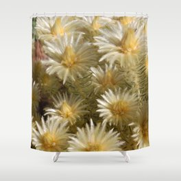 Fynbos Treasures Shower Curtain