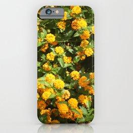 Blooming Lantana Plant iPhone Case